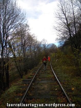 La pas pe calea ferata Oravita-Anina