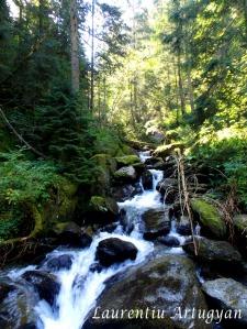 Valea Podragu