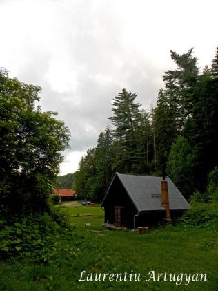 Loc de cort Lacul Buhui