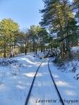 Calea ferata Anina - Oravita iarna