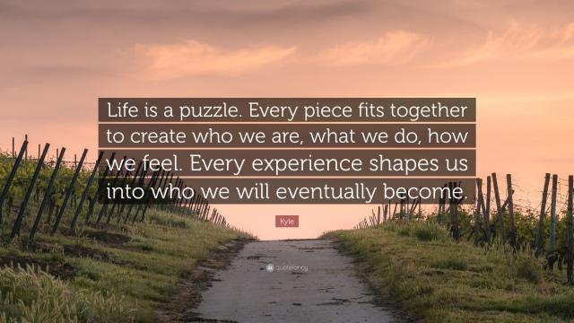 Puzzle-ul vietii
