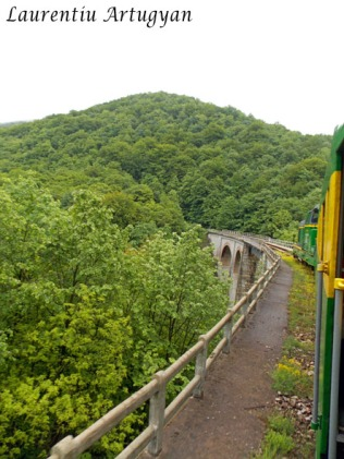 Tren pe Viaductul Jitin