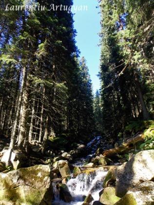 Cascade Valea Stanisoara