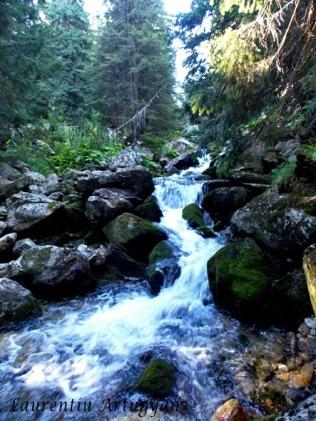 Parau Valea Rea Retezat