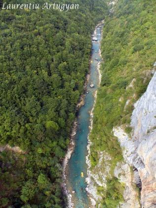 Canionul Tara Muntenegru