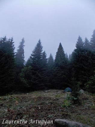 Ceata in Camping la Pietrele