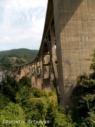 Pod in arc peste Tara