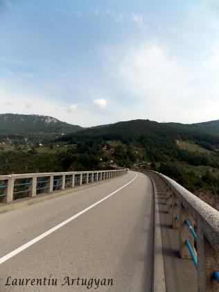 Podul peste raul Tara