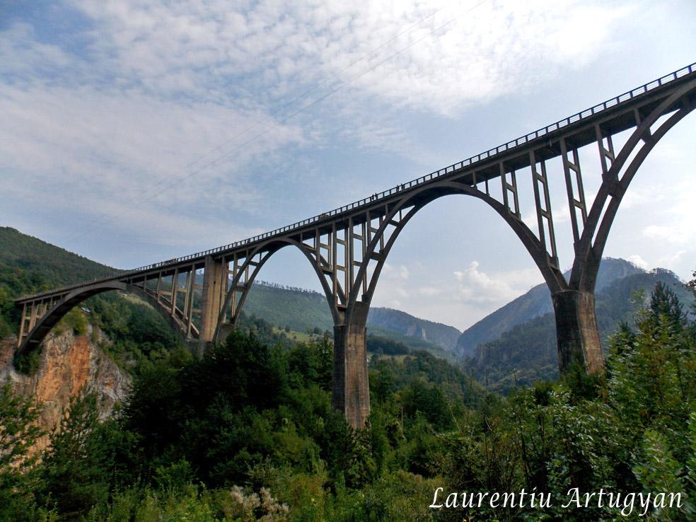 Podul peste Tara