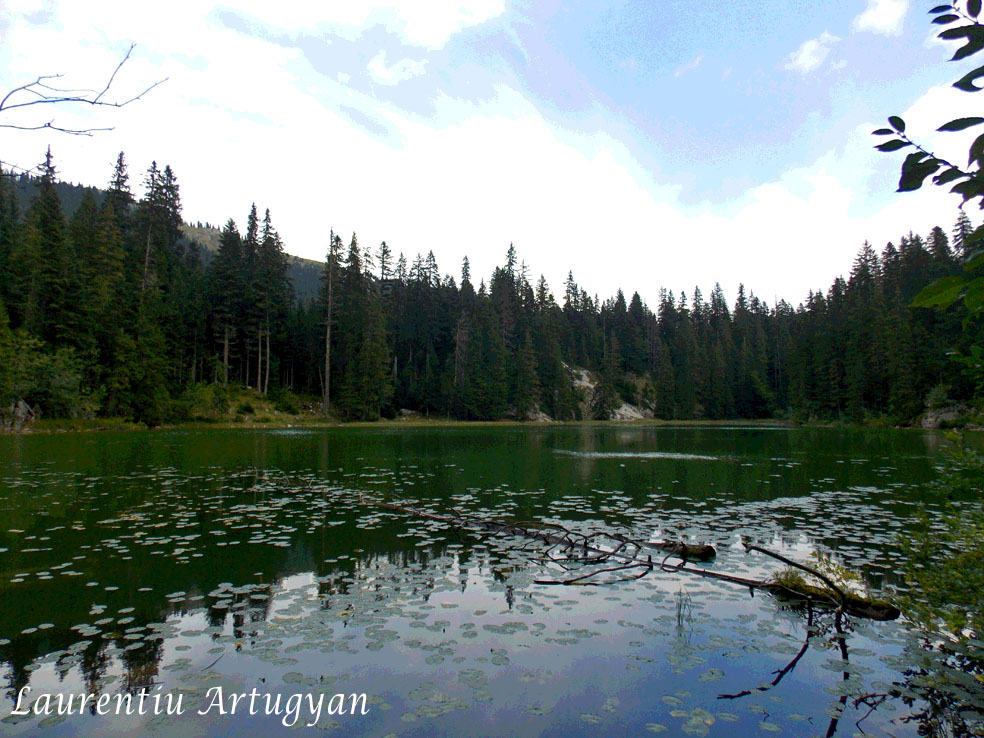 Zminje Jezero Durmitor