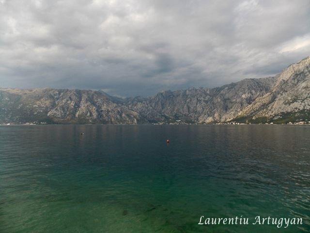 Nori in Golful Kotor