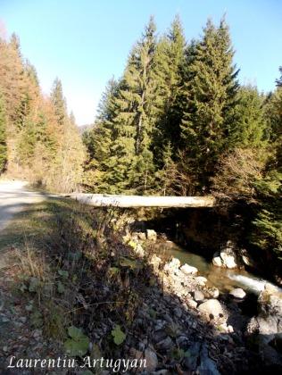 Podul peste Olteana