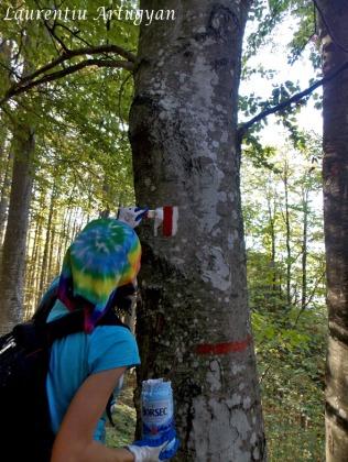 Refacere marcaj Muntele Mic-Borlova