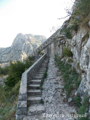 Urcare cetatea Kotor