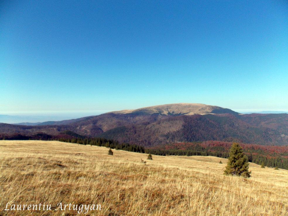Vedere spre Muntele Mic