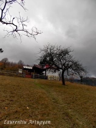 Biserica satul Scarisoara