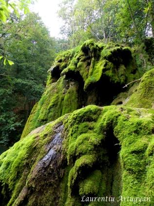 Cascada Beusnita - septembrie