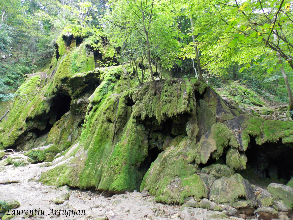 Cascada Beusnita seaca