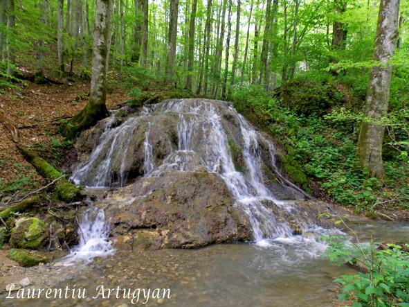 Cascada travertin Valea Toplita
