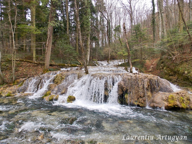 Valea Beusnita in martie