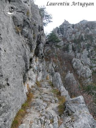 Geoturism Cheile Tasnei
