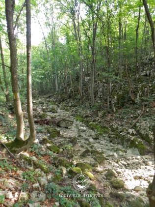 Traseu banda galbena Valea Beu Sec