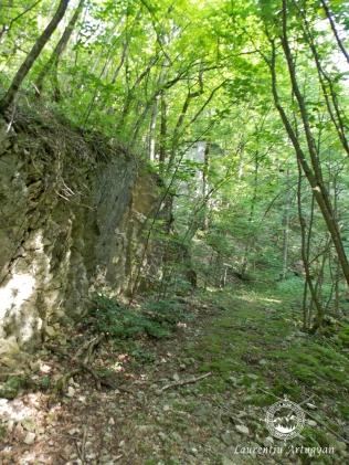 Traseu turistic marcat Valea Beului Sec