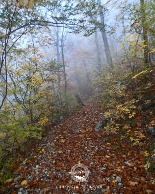Ceata pe traseul spre Cheile Jelarau