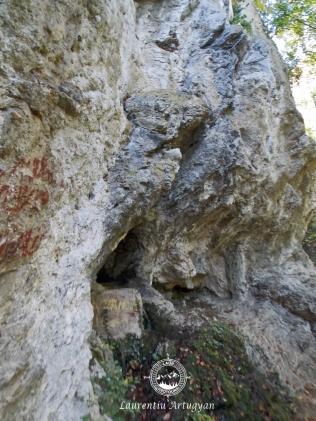 Perete calcaros la baza caruia se afla Izvorul Munk