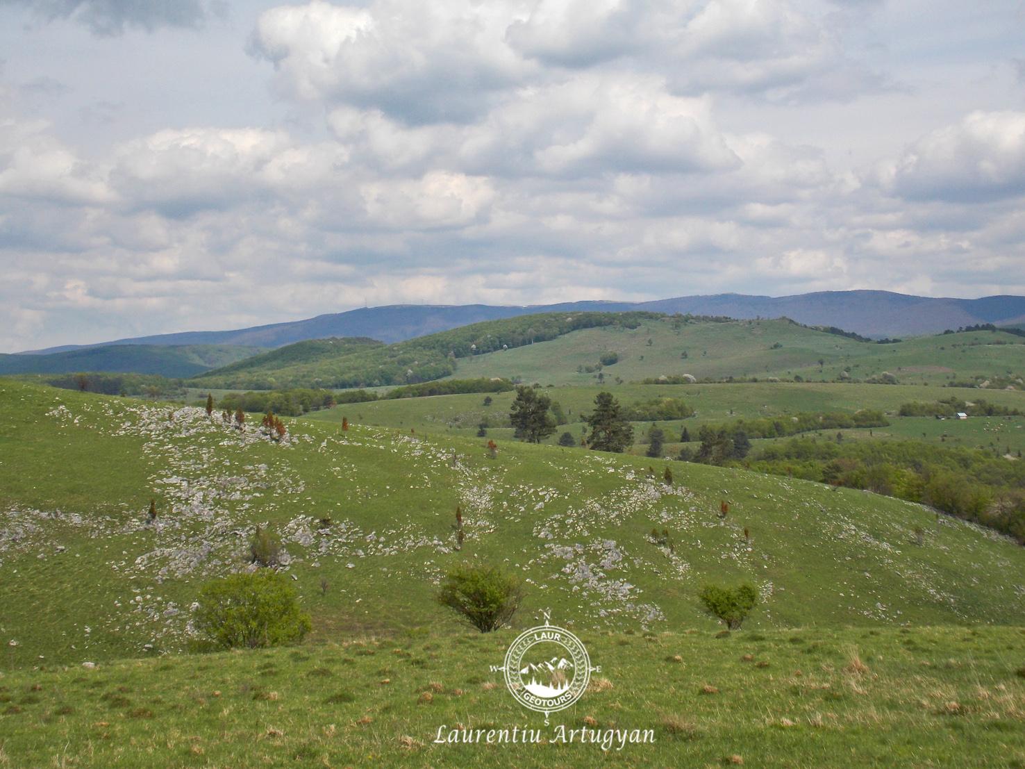 Camp de lapiezuri Podisul carstic Marghitas