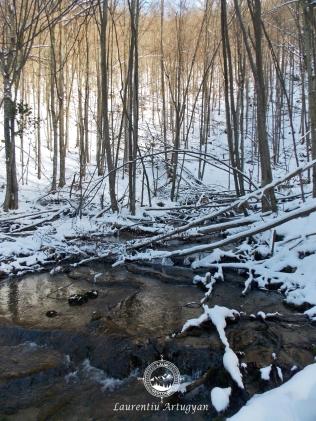 Izbucul Carasului iarna