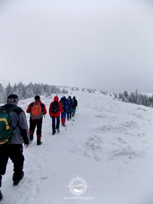 Ture pe munte in grupuri mici